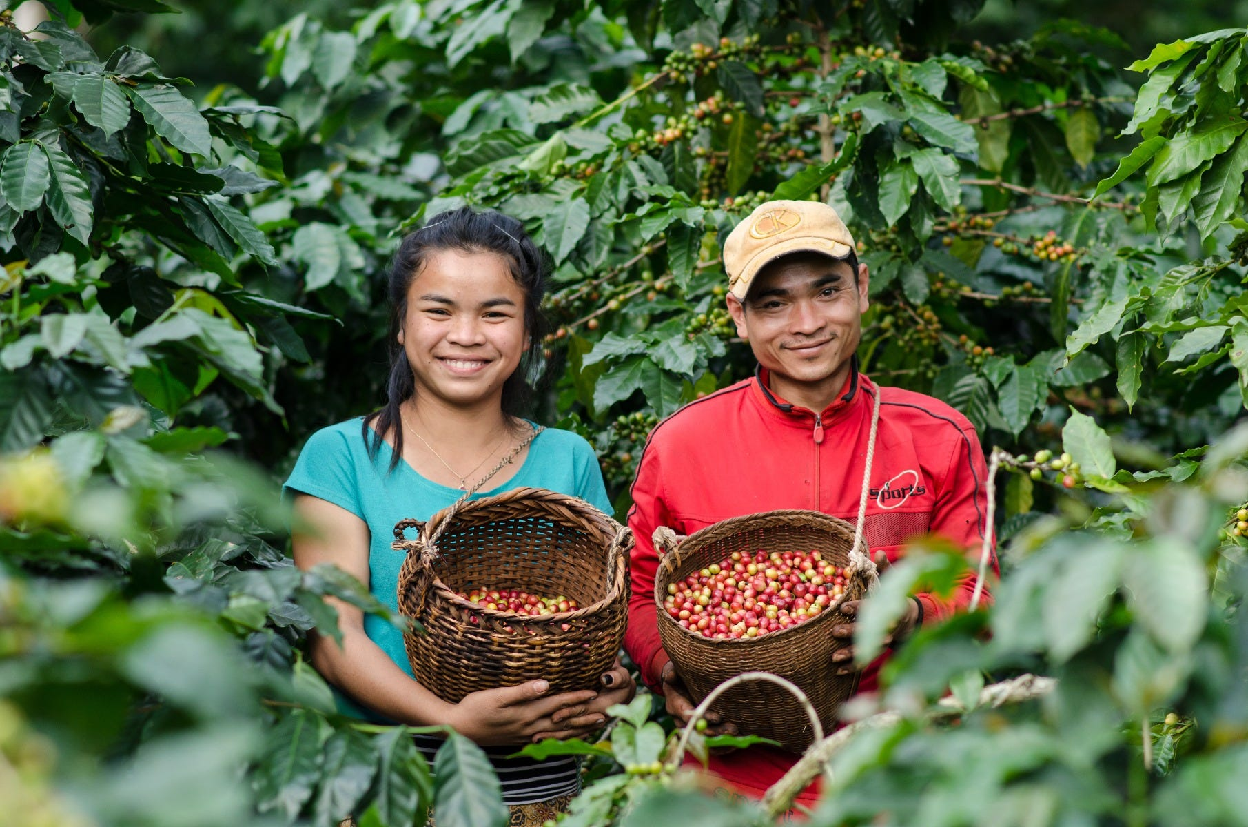Fairtrade coffee farmers